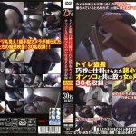 トイレ盗撮 巧妙に仕掛けられた超小型カメラがオシッコと共に放つ女の声や吐息までを30名収録 マニアゼロ LTJN-352
