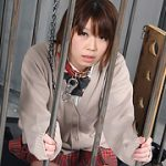 HAPPY FISH 唐沢未来 ハッピーフィッシュ h164 唐沢未来