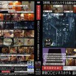 新宿○○ビジネスホテル 裏取引流出ビデオ ラハイナ東海 HHAD-222