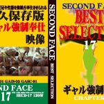 SECOND FACE BEST SELECTION17 セカンドフェイス SECB-17