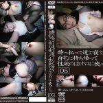 酔っ払って道で寝ていた女を自宅に持ち帰って性欲のはけ口に使った。05 GOGOS C-2144