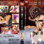 奴隷市場2 獣の黙示録9 SODOM DSD-31