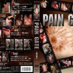 PAIN GATE ~向日葵の華~ SCRUM DDSC-002 ふうか