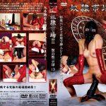 奴隷市場2 獣の黙示録13 SODOM DSD-35