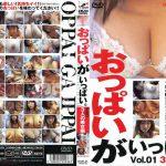 おっぱいがいっぱい。 Vol.01 3人の美女編 JNS DOPI-01 ナナ いずみ みり