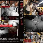 痴漢記録日記 vol.21 MOLESTIC OTD-021