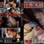 痴漢記録日記vol. 70 MOLESTIC OTD-070