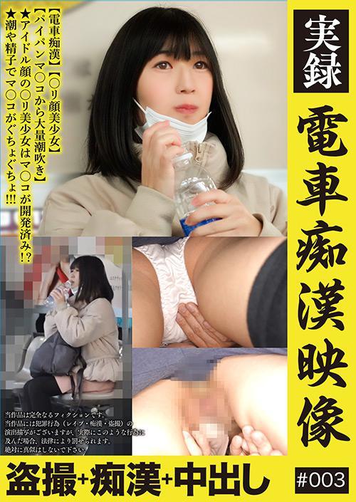 実録 電車痴漢映像 #003